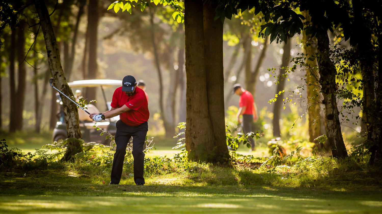 golfer in red plays from trees
