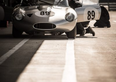 Jaguar E Type in half shade