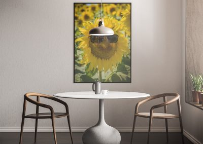 Room Mockups Sunflower Design