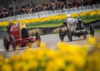 Daffodils line race track
